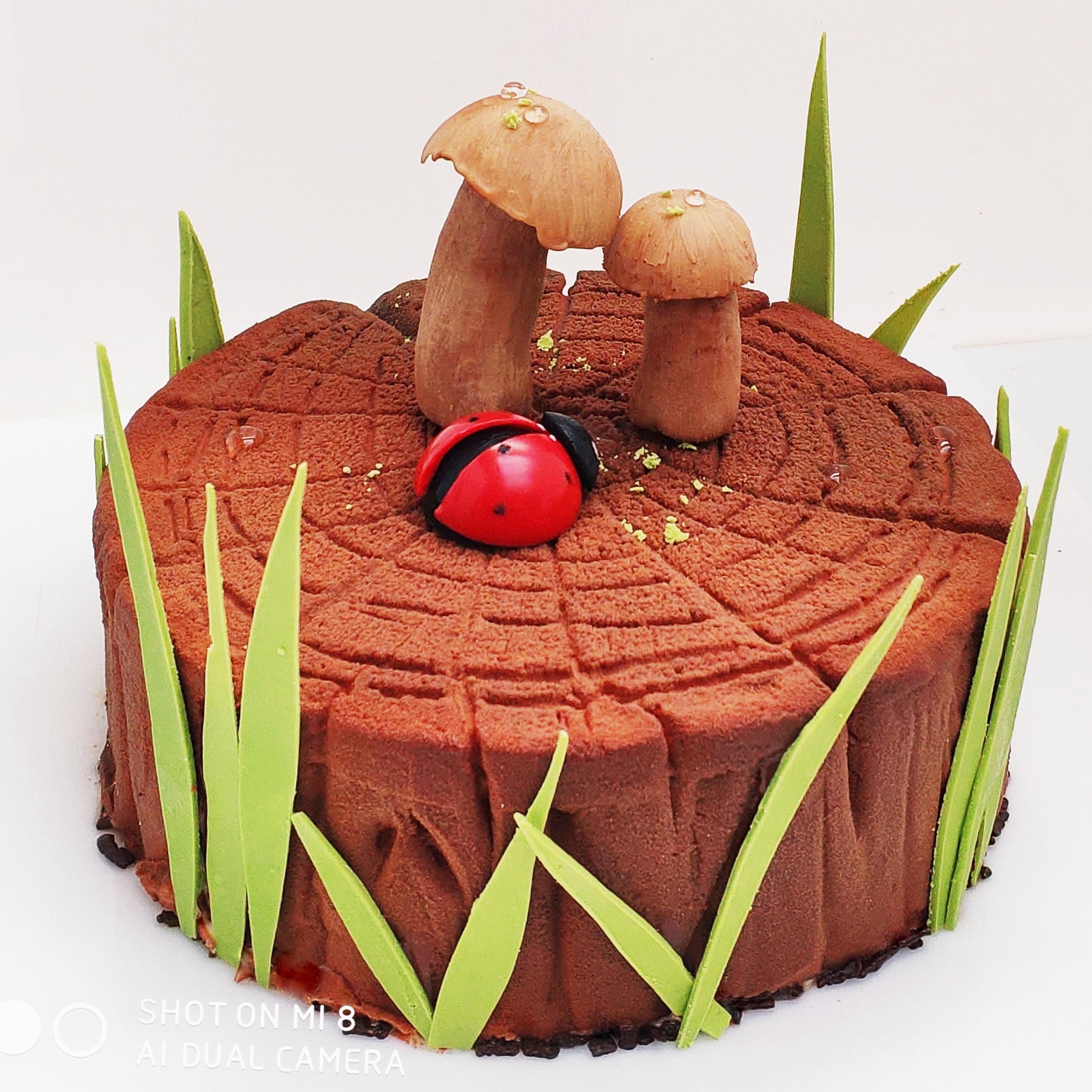 Шоколадні десерти
